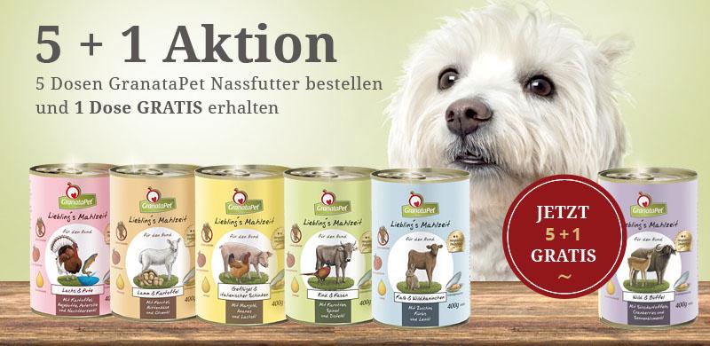 Die GranataPet 5+1 Aktion gilt auch für Hunde Nassfutter.