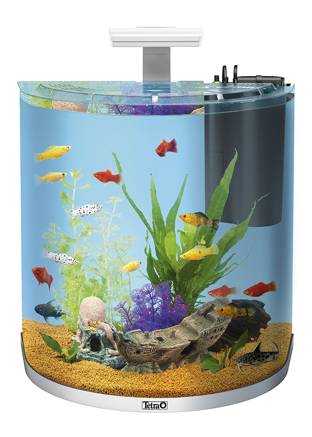 amazon angebot des tages artikel f rs aquarium bis zu. Black Bedroom Furniture Sets. Home Design Ideas